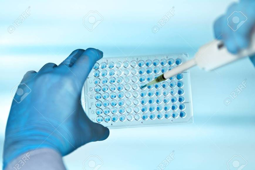 89630079-hands-of-scientist-in-the-biochemical-lab-with-pipette-and-multiwells-plate-technician-pipetting-pla (2).jpg